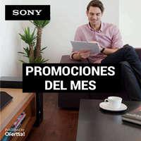 promociones del mes