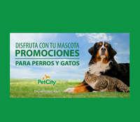 promo perros y gatos