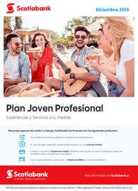 Plan Joven Profesional